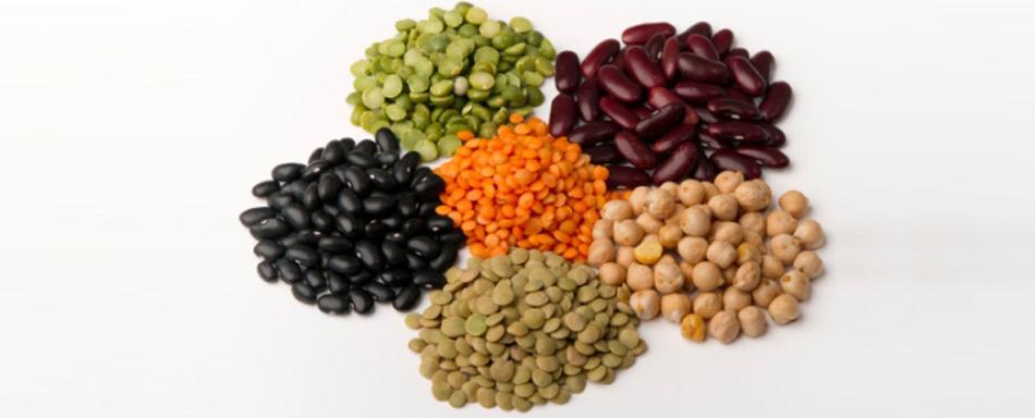 Ronchi del garda produce aromi e legumi di qualità